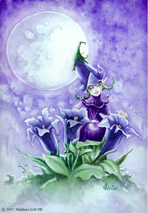 Miss Gentian under the moon